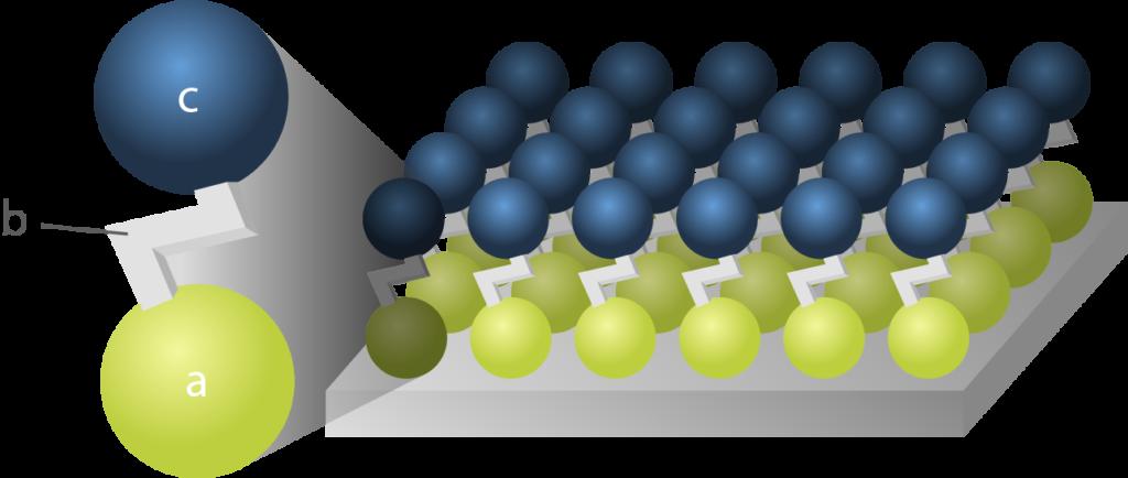 Représentation schématique d'une molécule monocouche auto-assemblée
